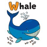 Funny little whale. Alphabet W Royalty Free Stock Images