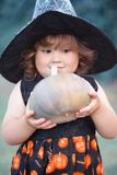 Funny little witch with pumpkin. Stock Photography