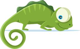 Cute Chameleon Vector Cartoon Illustration Royalty Free Stock Images