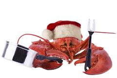 Funny lobster cooking for Christmas, isolated on white background. stock photos