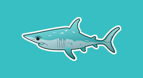 Funny mako shark Stock Images