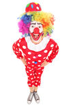 Funny male clown looking at camera Stock Images