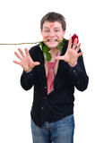 Funny man keeping rose in his mouth. Funny young man with kisses on face and rose in his mouth is ready to touch you isolated on white Royalty Free Stock Image
