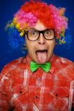 Funny man with party wig Royalty Free Stock Photo