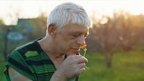 Funny man sniff a flower. Funny middle aged man smelling a flower at sunset stock video