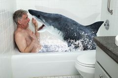 Funny Man, Tub, Bathtub, Shark, Bathing. A shark is attacking a funny man in his bathtub. Taking a bath has just become a dangerous thing to do at home in the stock image
