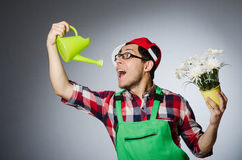 Funny man with watering Royalty Free Stock Image
