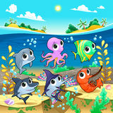 Funny marine animals in the sea Royalty Free Stock Photo