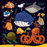 Funny marine life collection Stock Image