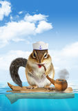 Funny mariner concept, animal chipmunk floating ocean Stock Photography