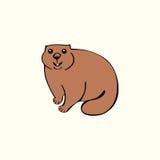 Funny marmot animal rodent Royalty Free Stock Photos