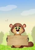 Funny marmot Stock Photography