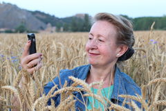 Funny mature woman doing selfie in gorgeous wheat field. 60 years old taking photos of herself Stock Photos