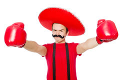 Funny mexican with boxer gloves Royalty Free Stock Photos
