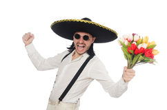 Funny mexican with sombrero hat Stock Images