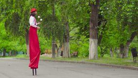 Comical mime walks on stilts and juggling. Funny mime in wide red pants with suspenders, hat and a white shirt is walking on stilts and juggling in the park stock video footage