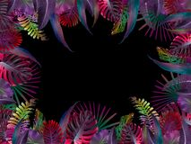 Funny and modern summer tropical background with exotic palm leaves Royalty Free Stock Images