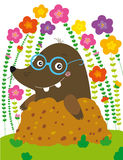 Funny mole. Illustration of funny mole with glasses Royalty Free Stock Photography