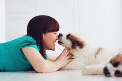 Funny moment of cute puppy licking laughing young woman. Lying on the floor royalty free stock photography