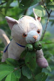 Funny moment. Soft toy of a cat. Soft toy on a guava tree and eating guava royalty free stock images