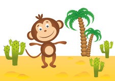 Funny monkey in Africa. Funny smiling monkey in Africa Royalty Free Stock Image