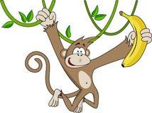 Funny monkey with banana. Stock Photos