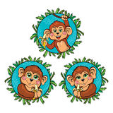 Funny monkey with a banana in his hand. Vector set Royalty Free Stock Photos
