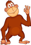 Funny monkey cartoon Royalty Free Stock Photography
