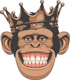 Funny monkey crown Royalty Free Stock Photo