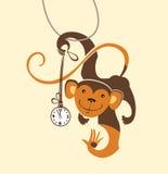Funny monkey. Stock Images
