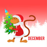 Funny monkey dressed as Santa Claus with Christmas tree Royalty Free Stock Photos