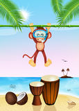Funny monkey and drums Stock Photo