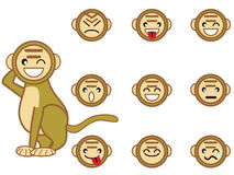 Funny monkey face Royalty Free Stock Photos
