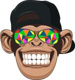 Funny monkey with glasses. Vectorial illustration, funny monkey with glasses