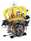 Funny monkey hand drawn watercolor illustration. Stock Photos