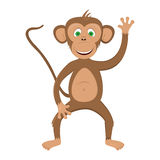Funny monkey - illustration. Illustration a brown monkey on a white background stock illustration