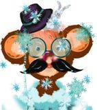 Funny monkey, juggler Royalty Free Stock Photo