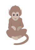 Funny Monkey Sitting Stock Photos