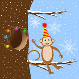 Funny monkey sitting on a tree branch Royalty Free Stock Image