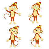 Funny monkey  in various poses Stock Photo