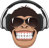 Funny Monkey With Glasses Stock Images