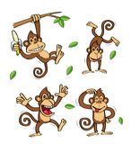 Funny monkeys banana set Royalty Free Stock Photos