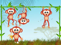 Funny monkeys Stock Images