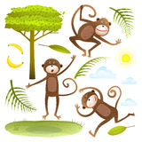 Funny Monkeys friends with tree leaves sun clouds lawn clip art collection Royalty Free Stock Photos