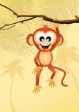 Funny monkeys Stock Photo