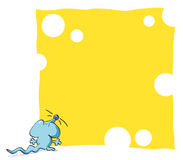 Funny mouse framework. Blue mouse eating background gruyere cheese Royalty Free Stock Images