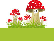 Funny mushrooms in the grass. Colorful vector with funny mushrooms Royalty Free Stock Photo