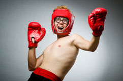 Funny nerd boxer Stock Images