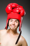 Funny nerd boxer Stock Photography