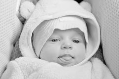 Funny newborn baby in the car seat Royalty Free Stock Image